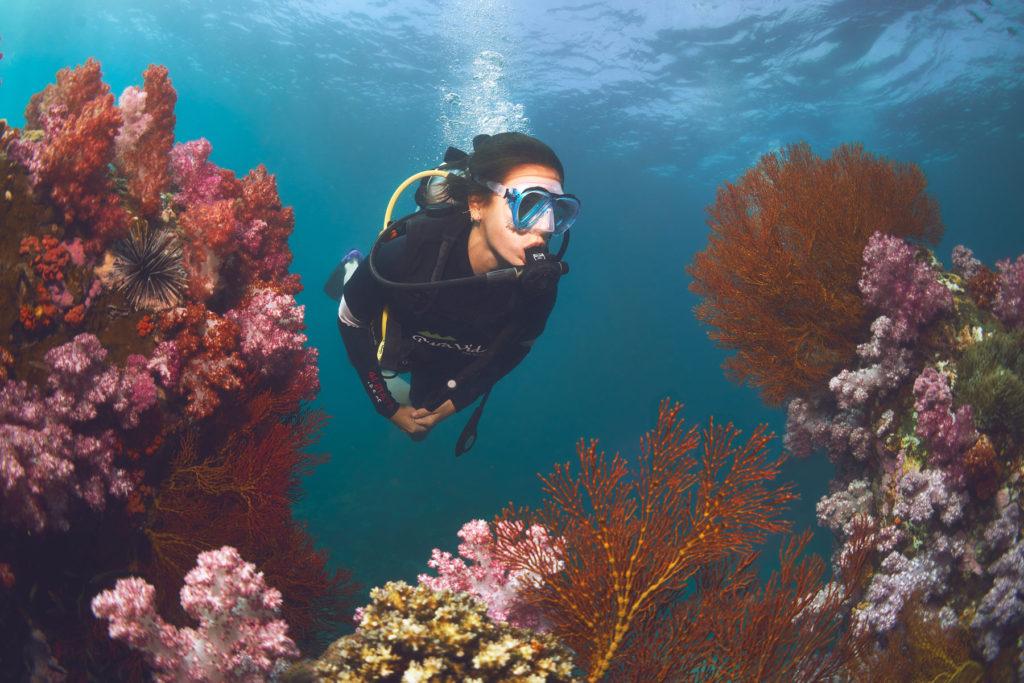 Paula Gonu Diving