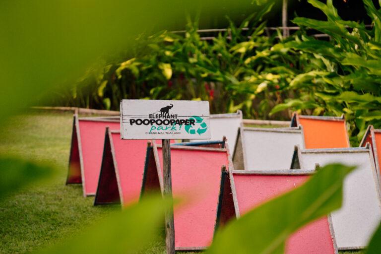 Poopoopaper Park Garden