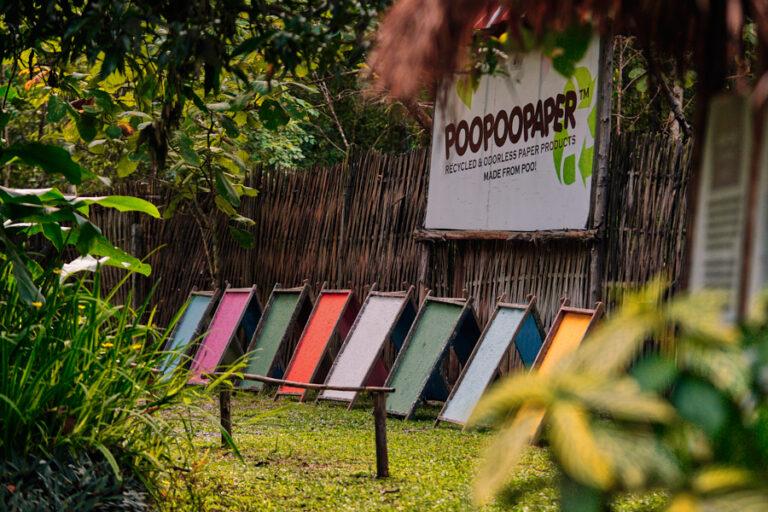 Poopoopaper Park